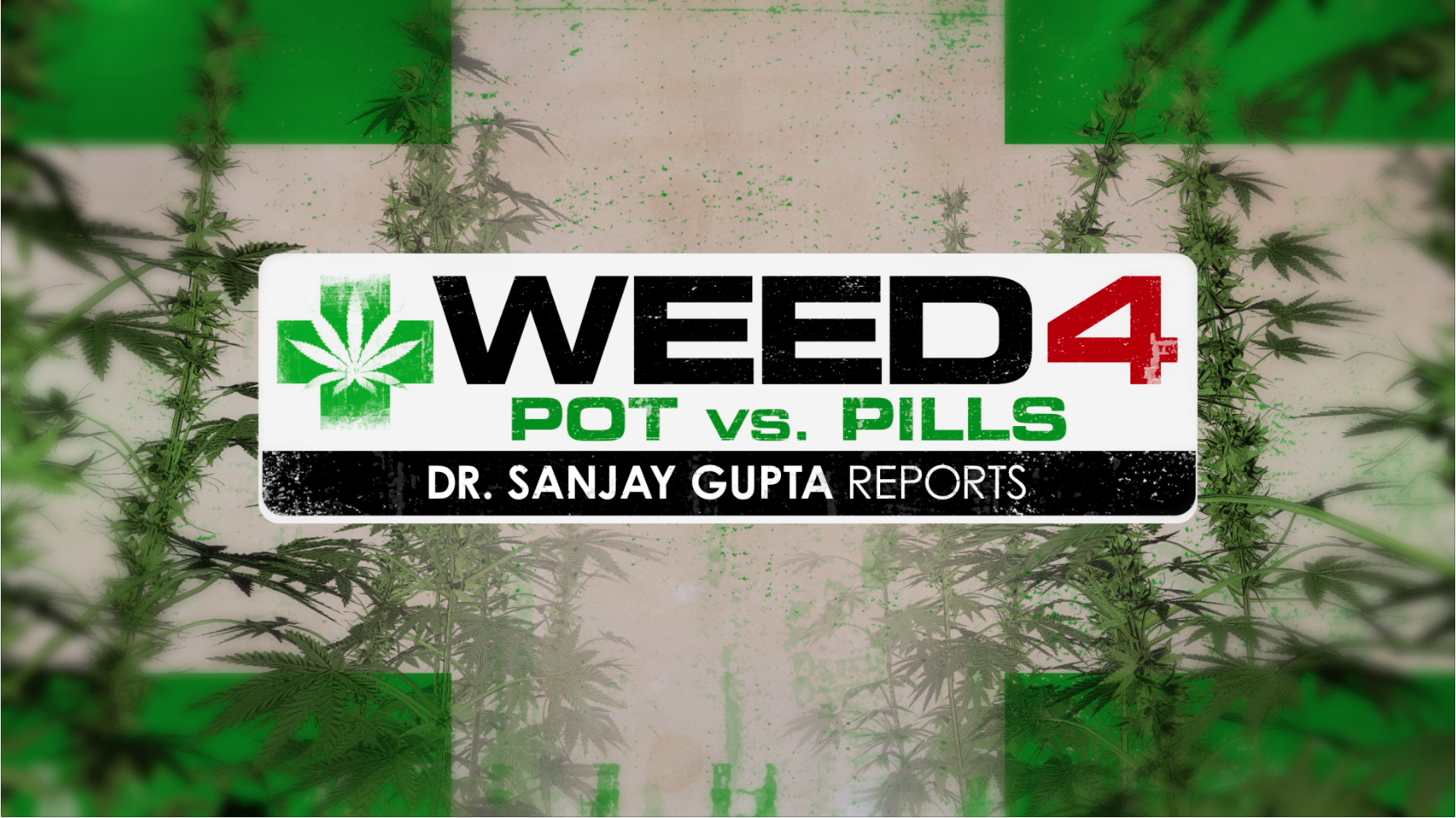 Sajay Gupta - Cannabis as a cure for opioid addiction