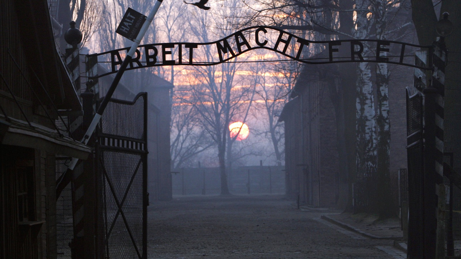 describing auschwitz camp as the angel of death Who was this man behind it all, and what made him the notorious angel of death and auschwitz is the natural answer ask a person who knew that camp what the worst part of it was.