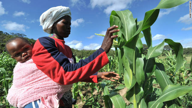 Farmer in Zimbabwe