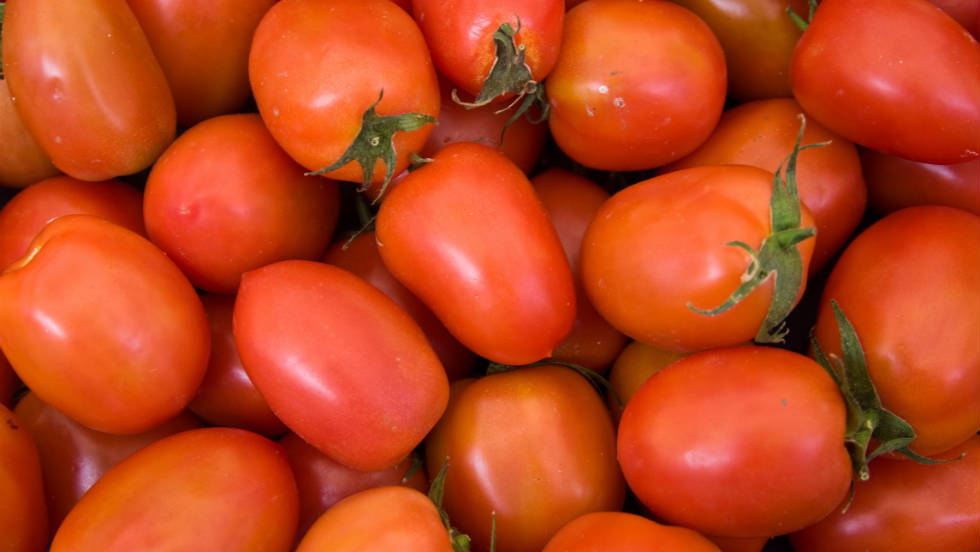"Pre-sliced Roma tomatoes purchased at deli counters in <a href=""http://www.forbes.com/free_forbes/2006/1127/173.html"" target=""_blank"">Sheetz gas stations</a> infected <a href=""http://www.cdc.gov/mmwr/preview/mmwrhtml/mm5413a1.htm"" target=""_blank"">more than 400 people</a> in the summer of 2004. Two other smaller outbreaks in the United States and Canada also occurred that summer and were linked back to a tomato-packing house in Florida."