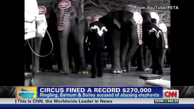 exp NR circus fined_00003701