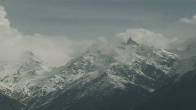 Search for avalanche survivors
