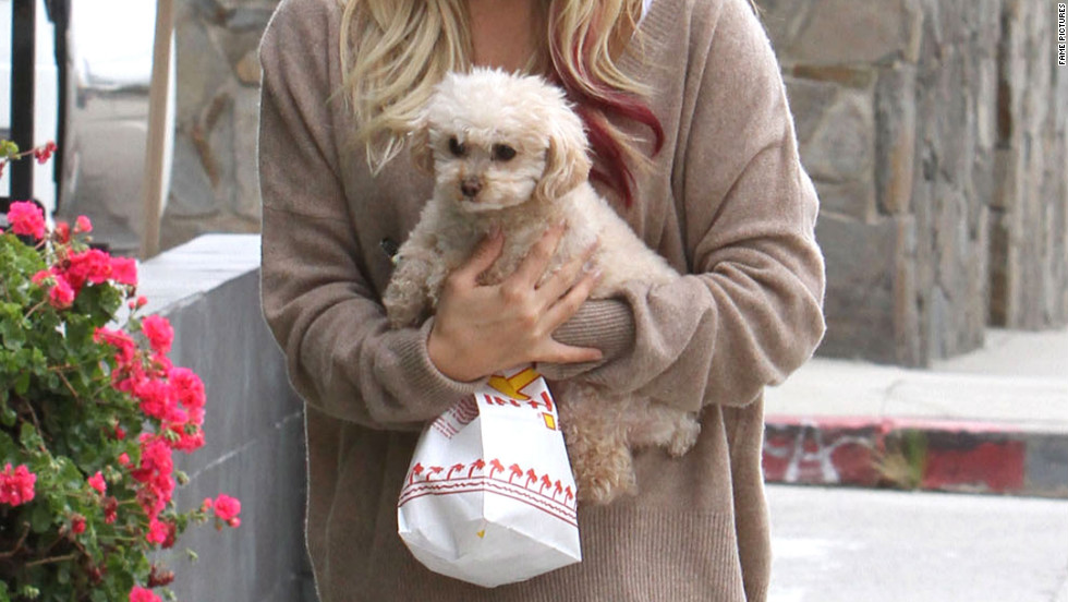 Ashley Tisdale grabs a bite to eat in Universal City.