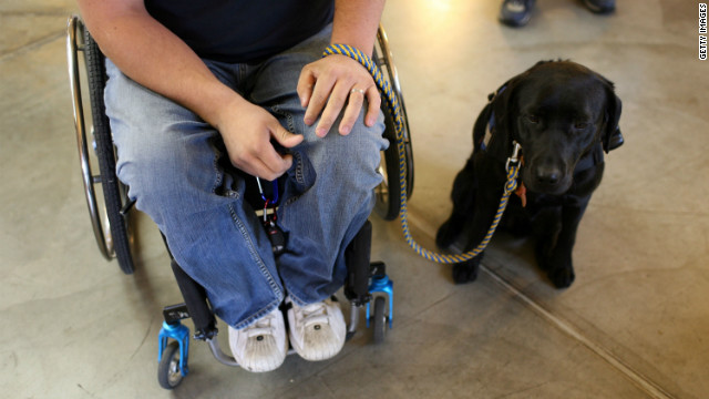 Service dogs are trained to help people with mobility issues.