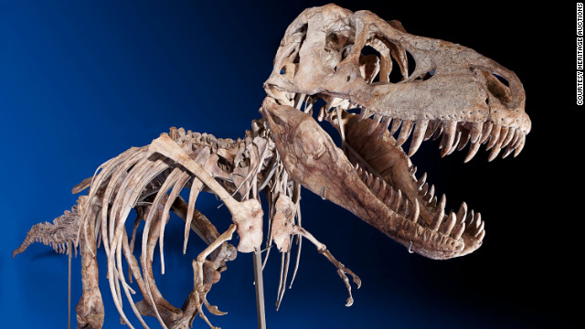 The U.S. says the skeleton of a Tyrannosaurus bataar was looted from Mongolia's Gobi Desert.