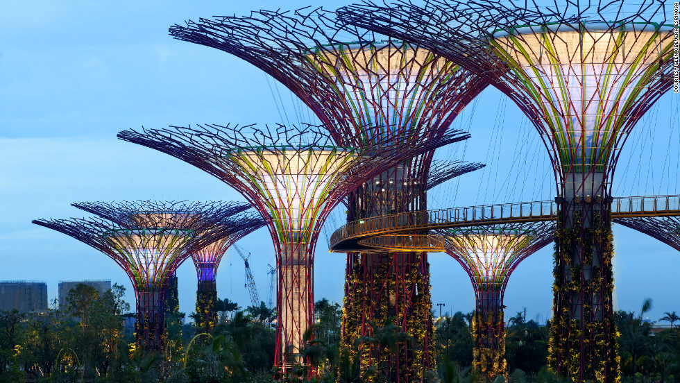 Solar energy collected by the supertrees during the day is then used to light the magnificent structures after night fall.