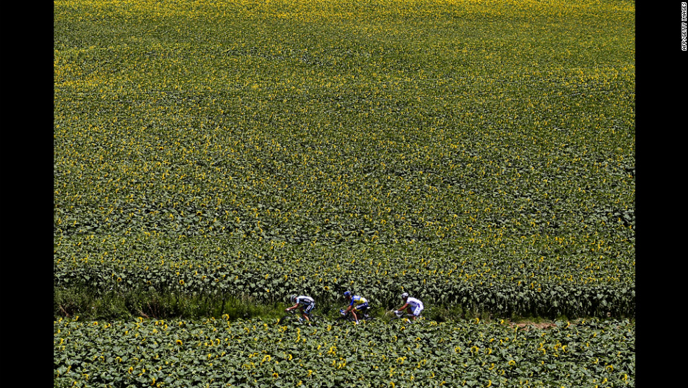From left, Belgium's Dries Devenyns, Denmark's Nicki Sorensen and France's Pierrick Fedrigo ride in a breakaway past fields of sunflowers on Monday during the 15th stage of the 2012 Tour de France.
