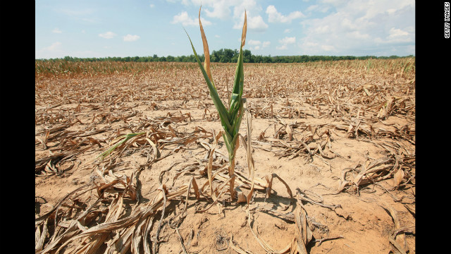 No drought aid for U.S. farmers