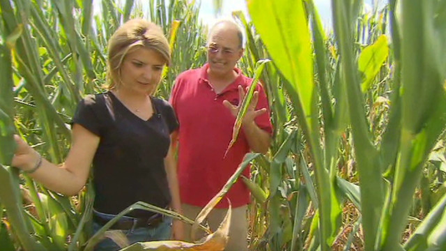 Farmers' crops struggle in drought
