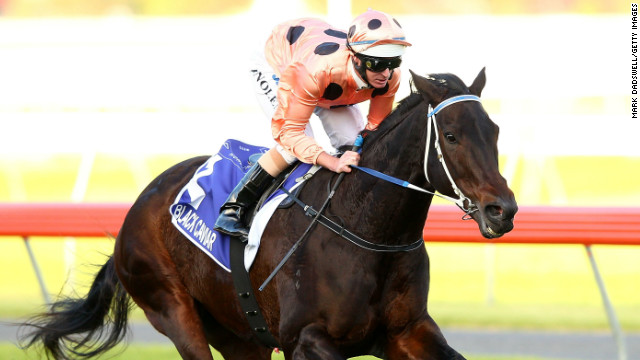 Black Caviar could make her long-awaited return to action early next year after recovering from injury.
