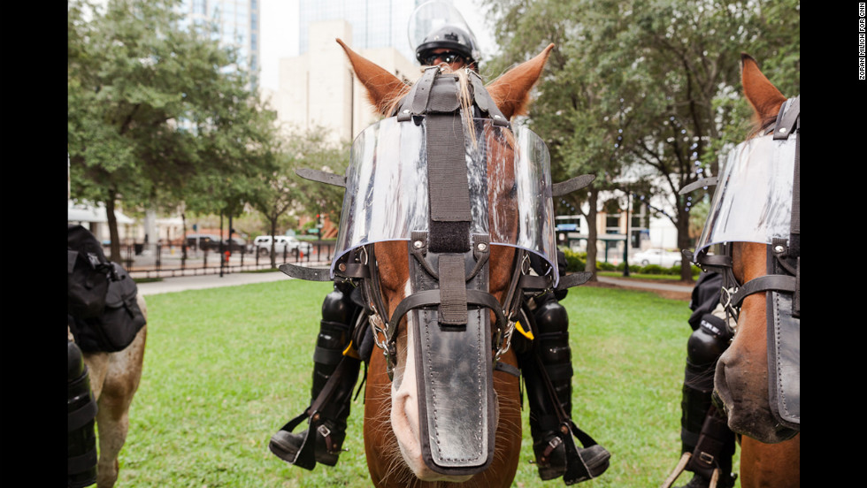 Mounted police horses from across Florida gear up for the convention.