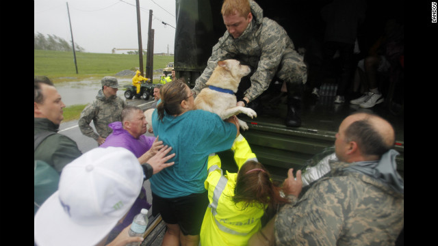 Emergency crews and residents rescue a dog during Hurricane Isaac on Highway 39 separating Plaquemines and St. Bernard parishes on Wednesday, August 29, in Louisiana.
