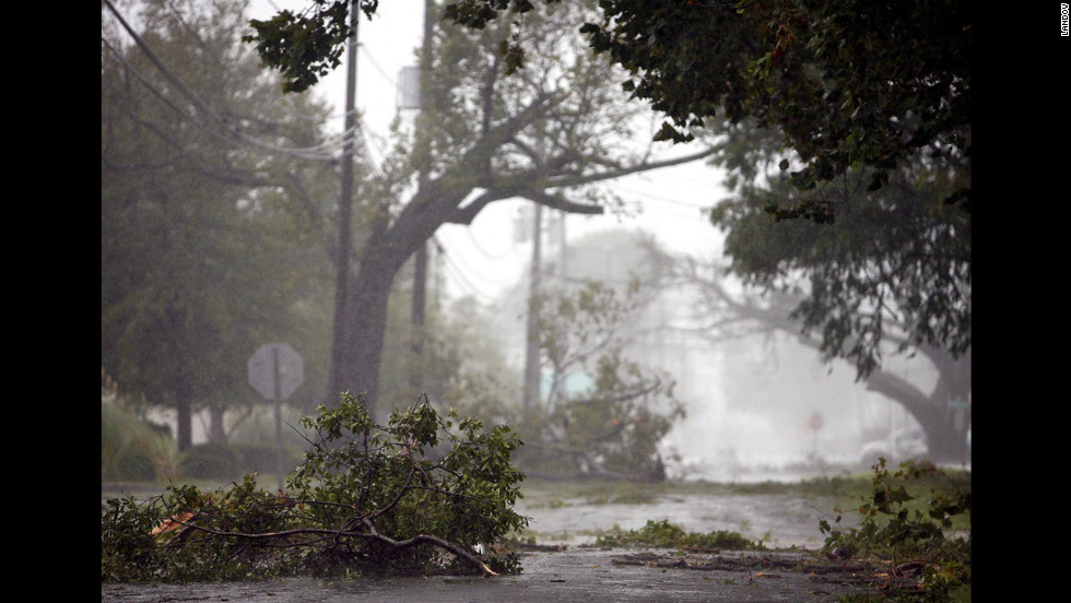 Winds from Isaac knocked down tree branches in Kenner, Louisiana.