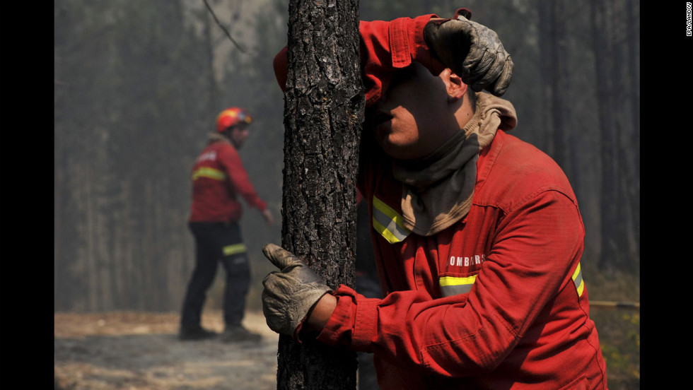 A firefighter leans against a tree in the village of Carapinha, Portugal. About 300 firefighters and three aircraft are tackling the blaze.
