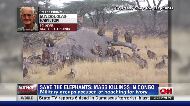 Poaching on the rise in Africa