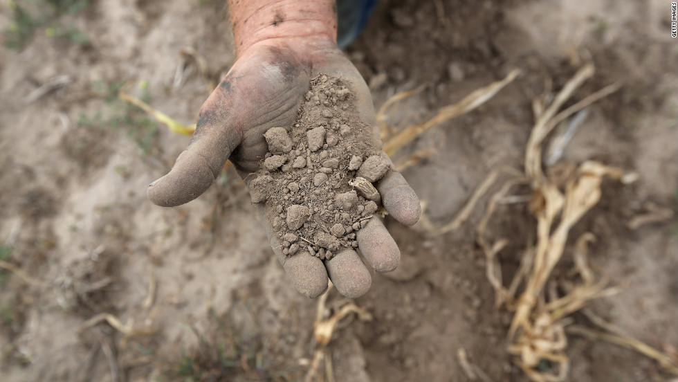 Farmer Darren Becker sifts through arid topsoil under a ruined crop on the family farm on August 24 in Logan, Kansas.