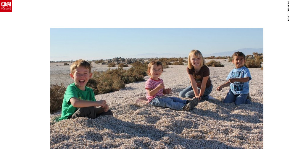 "<a href=""http://ireport.cnn.com/docs/DOC-840200"">Renee Longshore</a> is a teacher in California. This is a photo of her four children. She says because of the low teacher pay she has become a budgeter. But she says the greatest frustration for her as a teacher is not feeling valued or appreciated."