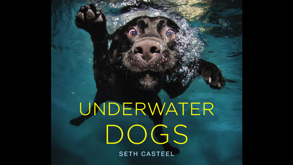 The cover dog, a black Labrador named Duchess, has the same name as photographer Seth Casteel's childhood pet.