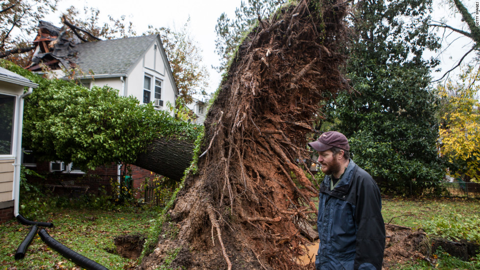 Sam Rigby walks on Tuesday near an uprooted tree that grazed his house and hit his neighbor's house in Washington.