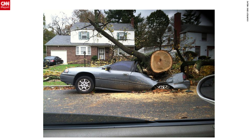 Eric Nelms was driving to the store in Orange on Tuesday, October 30, when he took this picture. He saw many trees down in his neighborhood, and now that the weather has calmed down, people have begun clearing their yards.