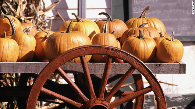 Why you crave pumpkin flavors in the fall