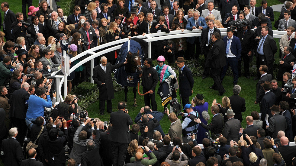Beyond the track, Black Caviar may also have a profitable career as a breeding mare, with Madden hinting champion British thoroughbred, Frankel (pictured), could be a good match.