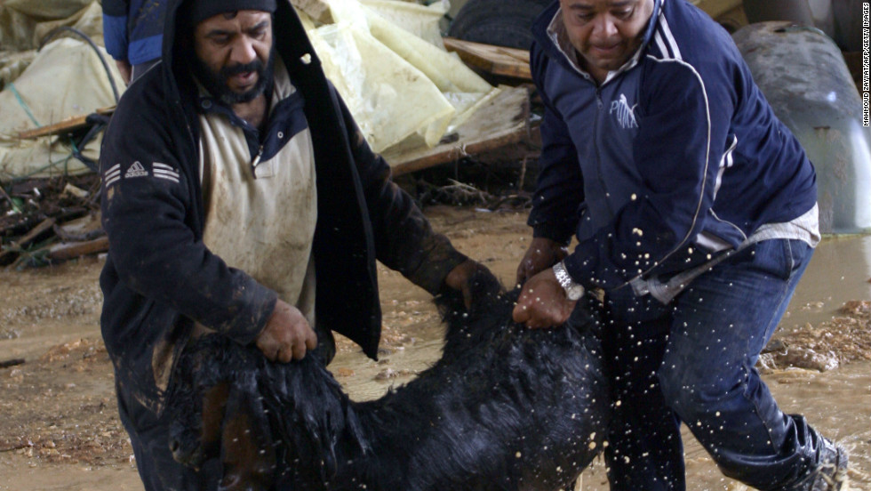 Lebanese farmers rescue a goat from the heavy rains and blusterous winds that the region encounters on January 7, 2013 in the Lebanese southern city of Jadra.