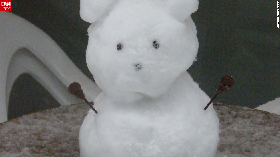 "OK, maybe this one's cheating, but you must admit -- it's adorable. Adrian Ringin <a href=""http://ireport.cnn.com/docs/DOC-910974"">spotted the little snow bear</a> on January 14 in Tokyo. ""The entire city was covered in snow, but I really liked this little example of creativity,"" he said."