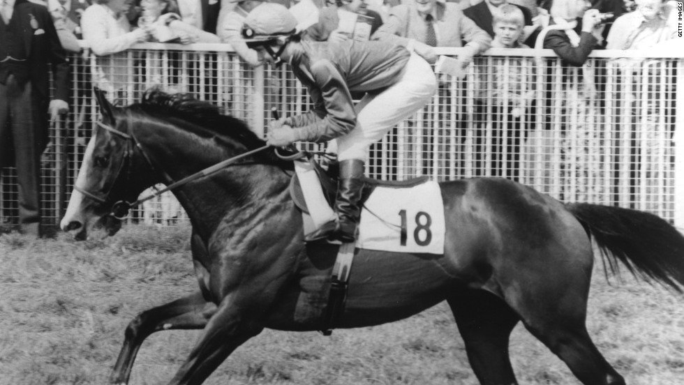 Of his eight races, Shergar won six, earning £436,000 ($688,000) in prize money. As a breeding stallion he was valued at a staggering £10 million ($16 million).