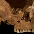 Richard III remains 10
