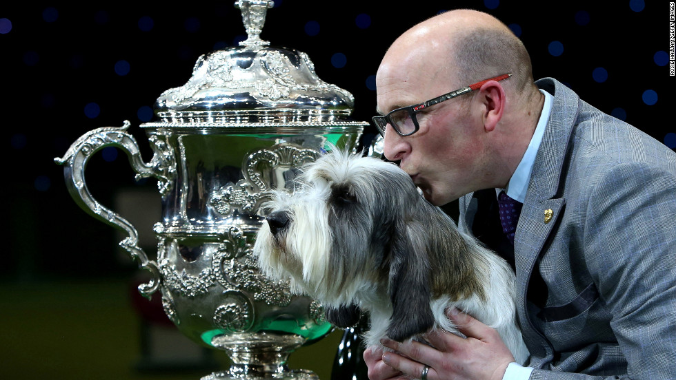Gavin Robertson and Jilly, a basset griffon Vendeen, celebrate winning the Best in Show category of the 2013 Crufts dog show on Sunday, March 10, in Birmingham, England. The four-day show featured more than 25,000 dogs, with competitors traveling from 41 countries.