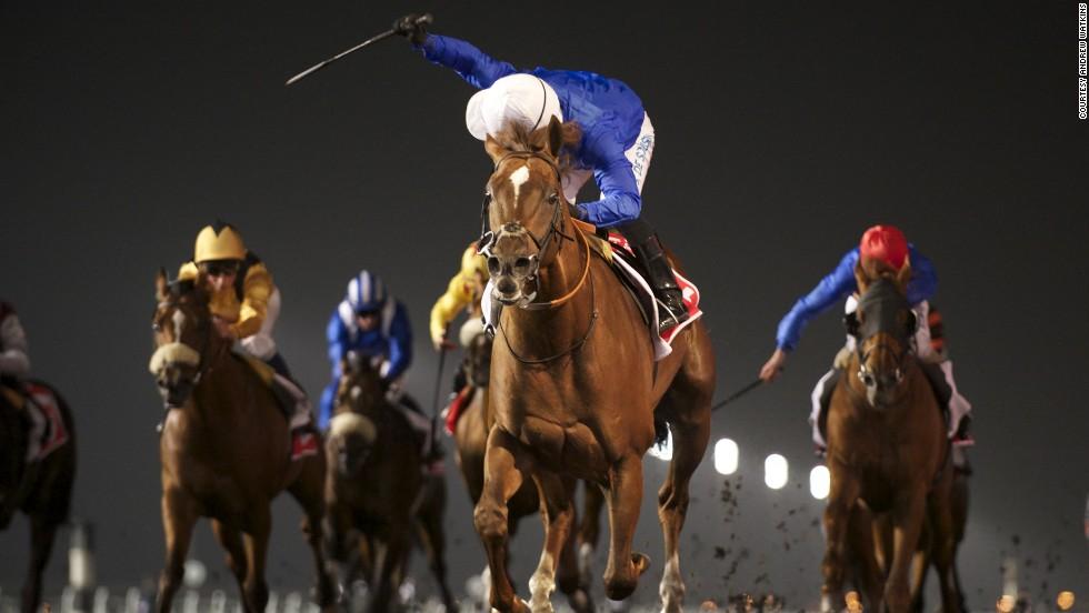Gambling horse racing stables casino gaming in maryland