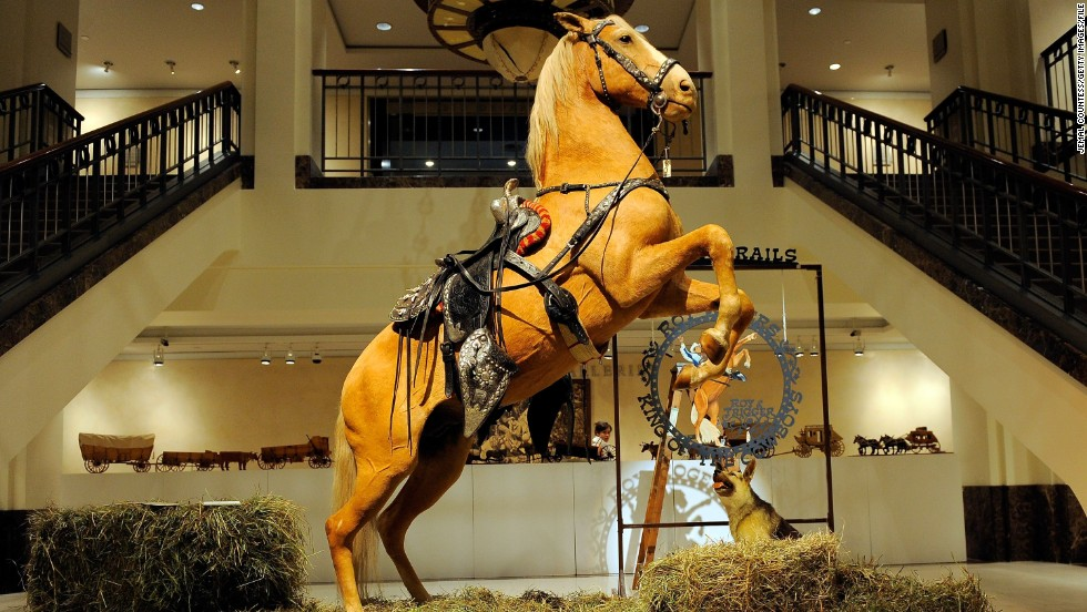 Cowboy actor Roy Rodgers' trusty sidekick, Trigger, was immortalized in his iconic rearing pose. Bought by a U.S. cable company for $266,500 in 2010, Trigger is one of many taxidermy horses on display across the world.