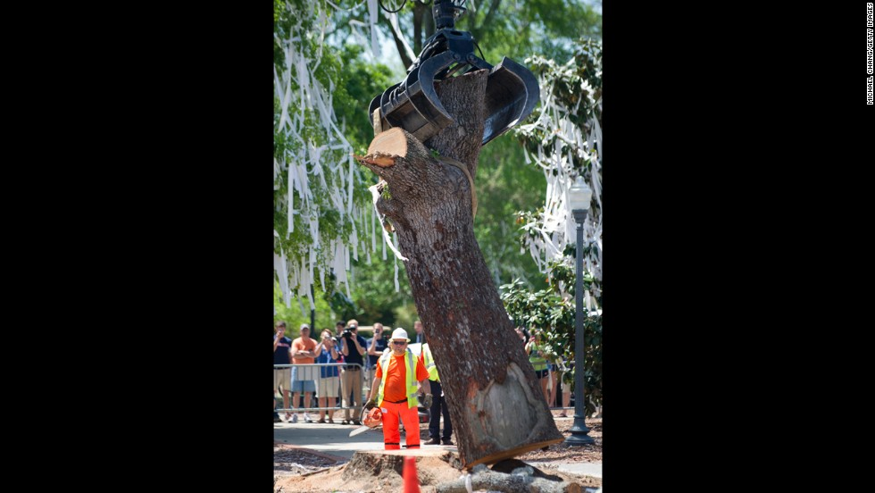 A crane grabs a tree trunk on Tuesday.