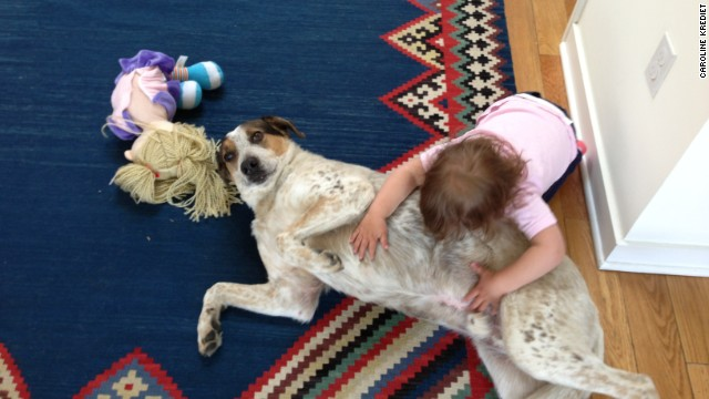 "Dogs Hector (pictured) and Lemon ""were our kids"" before baby arrived, says Caroline Krediet."