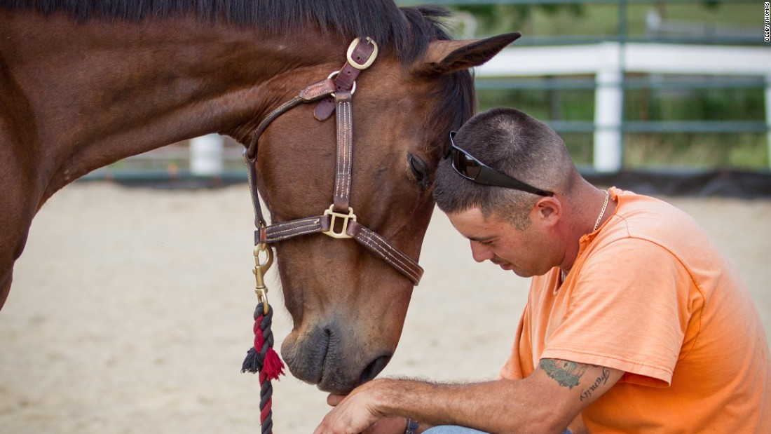 "David and Ace of Hearts share a moment. ""Every time I go to the barn, I can tell someone has changed by being around these horses,"" Tucker said."