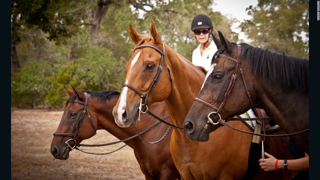 Lynn Reardon, founder of LOPE, says that ex-racehorses are very attuned to body language. She uses this in her training techniques. From back: Luther with owner Patti Brown Standen astride, Red Joe and Big Trump.