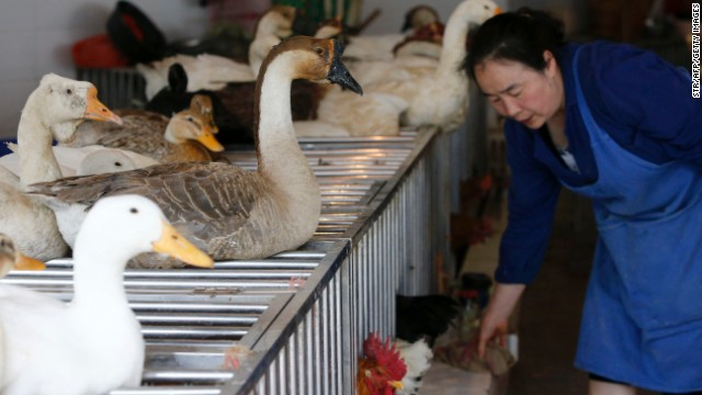 Health experts believe bird flu infections in humans are a result of exposure to affected poultry or contaminated environments.