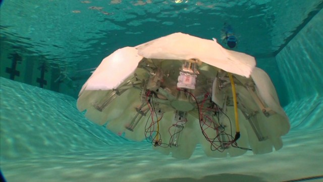 Robotic jellyfish may be underwater spy