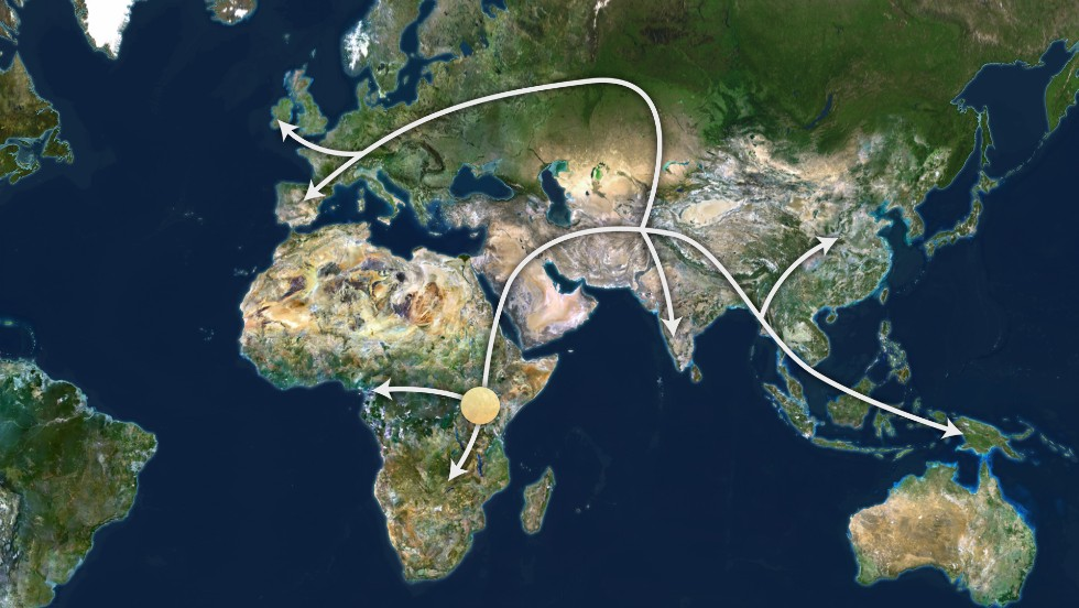 An estimation of how the world's population migrated out of Africa around 100,000 years ago.