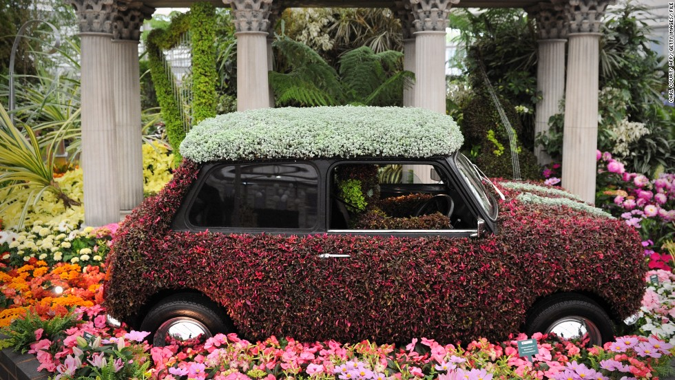 A flower-covered Mini Cooper in 2012, just one of the eye-catching creations for which Chelsea has become known in latter years.