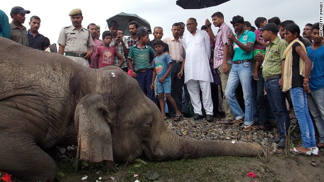 Indian villagers gather near the carcass of one of the elephants killed by the train in West Bengal.