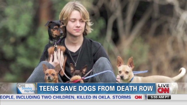 Lou Wegner saves dogs young icons _00001726.jpg