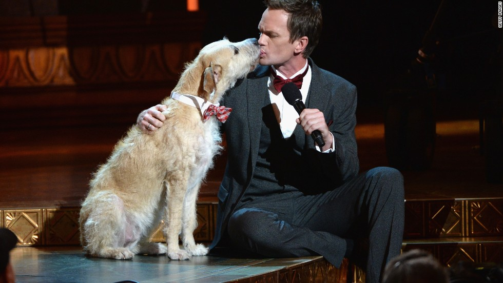 "Neil Patrick Harris gets up close and personal with ""Annie"" dog Sandy at the Tonys."