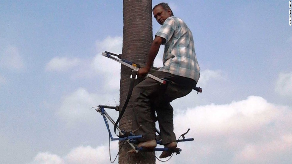 D. Renganathan developed a mechanical tree climber which can be used for scaling palm and coconut trees. Climbing trees for harvest is difficult and dangerous work -- the tree climber designed by Renganathan uses a 'four-lock pin' system to prevent falls. The device now sells across south Asia.