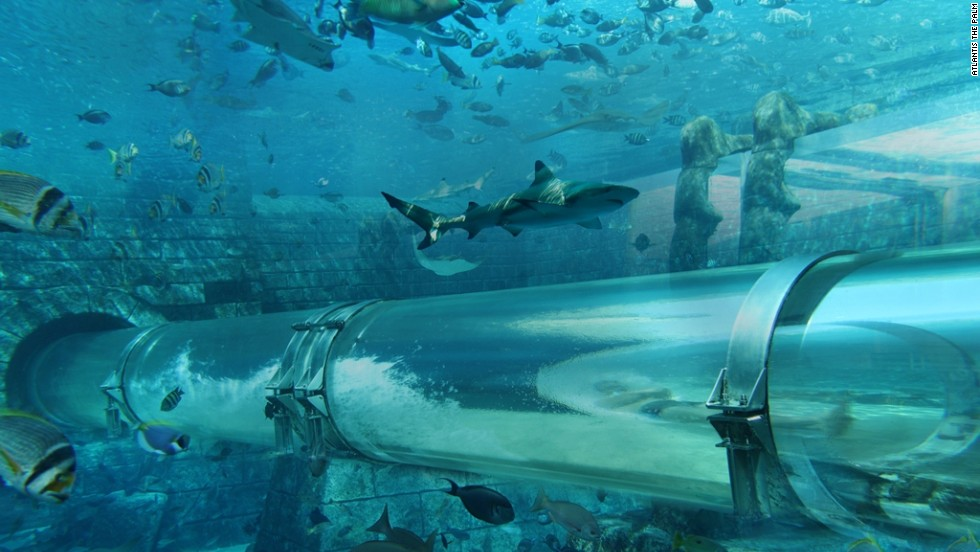 Dubai has long been obsessed with unusual theme parks. One of the city's landmark tourist destinations is Aquaventure at the Atlantis Hotel on the Palm island. The Shark Attack ride -- whereby visitors slide through a shark-filled aquarium -- is particularly popular.