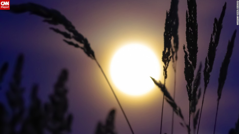 "<a href=""http://ireport.cnn.com/docs/DOC-993827 "">Daniel Mueller</a> shot this image of the supermoon in Portland, Oregon, as it peeked through the grass stalks. Also an amateur astronomer, Mueller says, ""I find that photography and astronomy are both contemplative and humbling pursuits."""