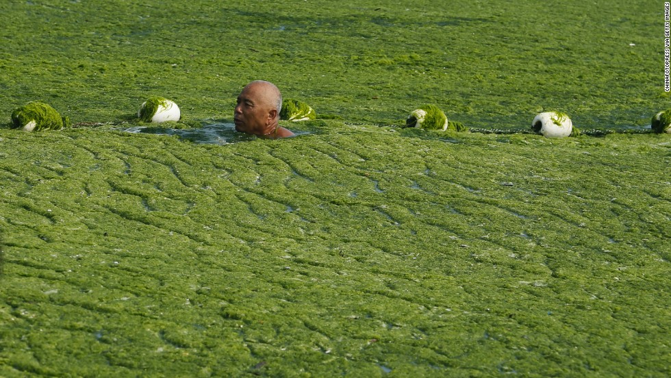 Chinese officials have blamed past algae outbreaks on unusually warm seas. But scientists say that agricultural waste, industrial pollution, and human sewage are often to blame.