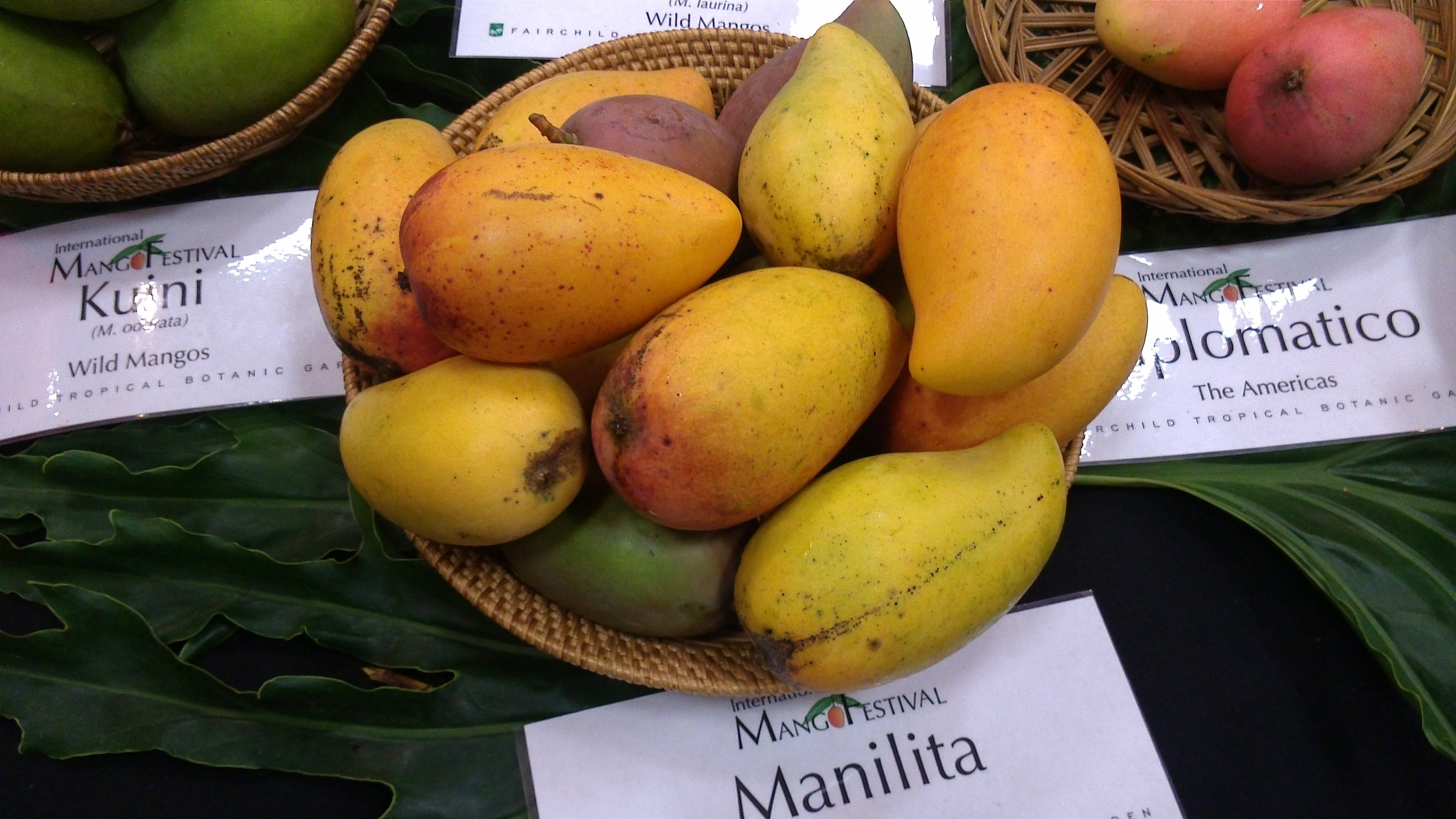 Where Can You Find The Perfect Mango Cnn Travel