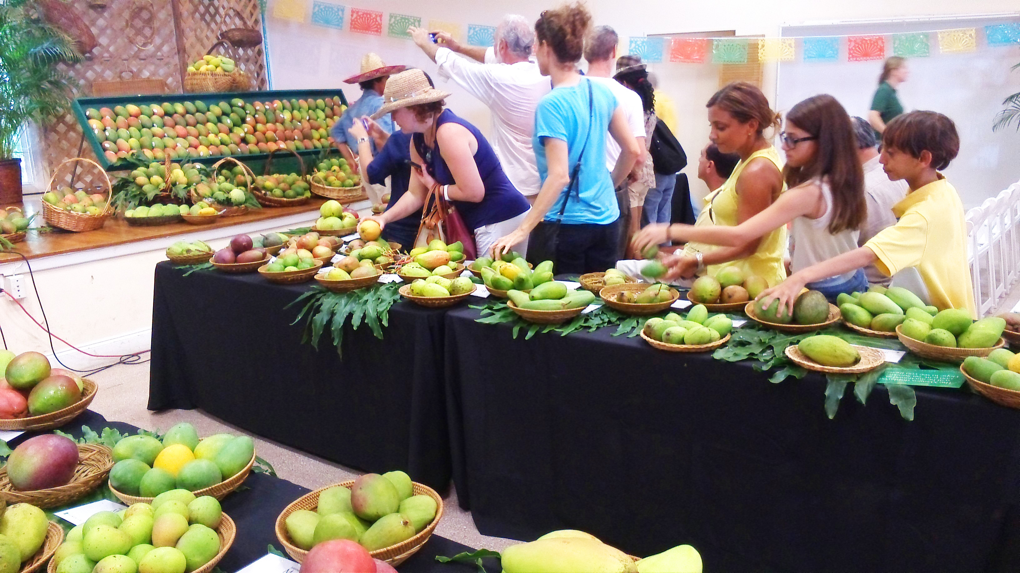 Where can you find the 'perfect mango'? | CNN Travel